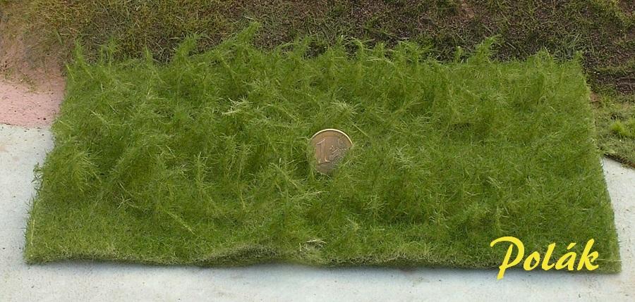 Polak, High grass