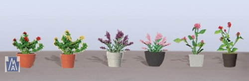 95565 HO (6) Assorted Potted Flower Plants 1, Pflanzen in Töpfen