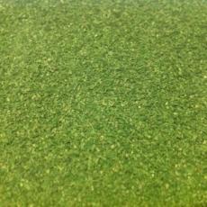 2832 Polak Naturex F mittel birkengrün
