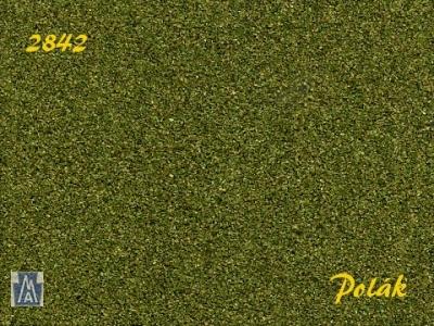2842 Polak Naturex F mittel mittelgrün