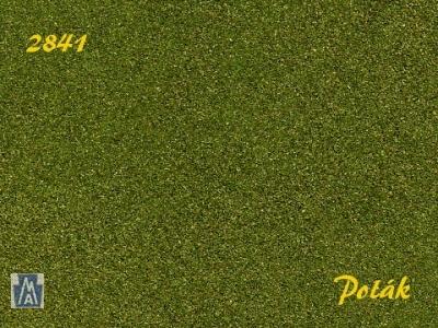 2841 Polak Naturex F mittelgrün fein