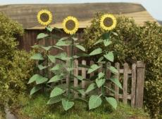 VG4-024 Sunflowers 1:45/1:48, Sonnenblume, Bausatz
