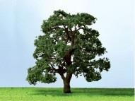 92423 Live Oak, Eiche, O Scale