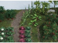 95722 Summer Vegetables Garden, Bausatz