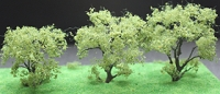 92208 N Chesnut Tree (3)