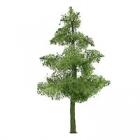 94291 N Pine (4)