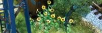 95523 HO Sunflowers, Sonnenblumen