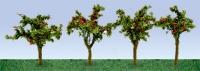 95517 HO Apple Sapling, Apfelschössling