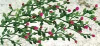 95539 HO Rose Vine, Kletterrose