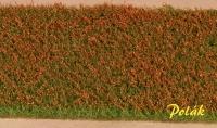 5971 Polak Blumenwiese niedrig - rot