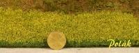 5974 Polak Blumenwiese niedrig - gelb