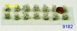 9182 niedrige Sträucher (14) weiß blühend ca.15mm