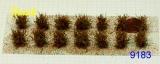 9183 niedrige Sträucher (14) orange blühend 0.25-0.6mm
