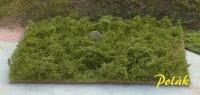 5904 Polak Wildgebüsch grüngemisch