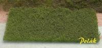 5939 Heidelbeeren 17.5x13cm  0.25-06mm