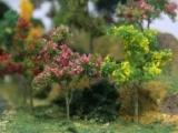 95547 HO Flower Trees, blühende Bäume
