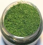 2831 Polak Naturex F - fein - birkengrün