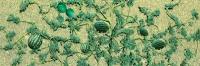 95576 O (4) Watermelon Patch