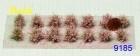9185 Niedrig Sträucher blühende - rosa