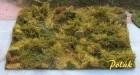 9813 Waldbestand - Variante C