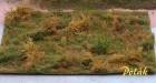 9814 Waldbestand - Variante D
