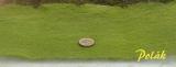 7801 Polak Statdekor fein - lärchengrün Fein - Faser lang 1mm