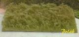 5944 Polak Hochgras – Vertrocknetes Gras