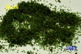 2453 Polak Purex Special grob grün