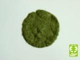 002-03 Grasflocken 2mm Frühsommer