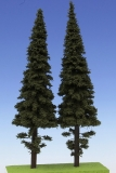 SM4250 Fichte / Spruce with short trunk 250 mm