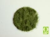 004-03 Grass-Flock 4,5 mm - Early Summer / Frühsommer 50g